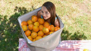 Exxxtra Small Orange You Glad Im So Tiny Sabrina Rey
